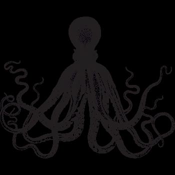 Chobotnice - Vyber si potisk 128dbd8e5b