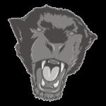 Puma Černá
