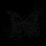 Motýl grunge