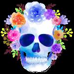 Lebka s květy