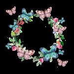 Rámeček z motýlů