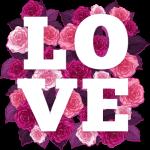 Love full of roses